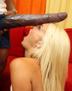 Негр с огромным членом дал в рот сексуальной блондинке